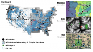 Map of United States with National Ecological Observator Network sites shown and panels showing: 1) Domain 3 with ecoregions; 2) An individual site (TALL) with elevation and vegetation survey plots; and 3) an individual vegatation survey plot with a virtual FIA design imposed on it.